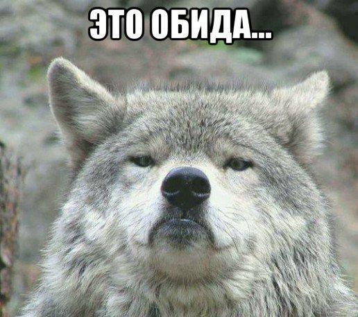 zarabotok-wow-3